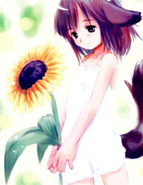 http://otaku.lv/uploads/20060222_413_anime_neko_fav524.jpg